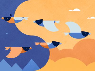 Birds in Migration