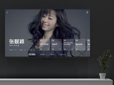 TV music player - Singer details