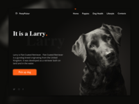 Daily UI #003 - Landing Page for Dog Shelter