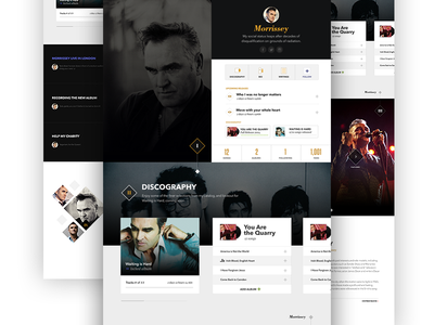 Morrissey Profile ux ui avenir bodoni music player profile