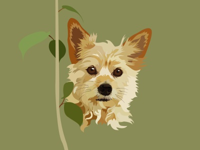 Zoey the Australian Terrier Portrait pet portrait christmasgift christmasgifts designer pet gift illustrator art vector illustration vectorillustration animal graphic design graphicdesign design vector illustration illustrator portrait
