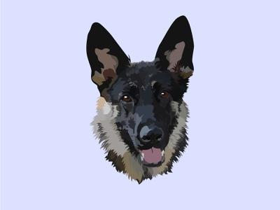 Keeva the Rescue German Shepherd Portrait animalportrait animal gsd personalizedart customart gift portraits portrait illustration portrait pet petportrait illustration illustrator designer design vector graphicdesign germanshepherd