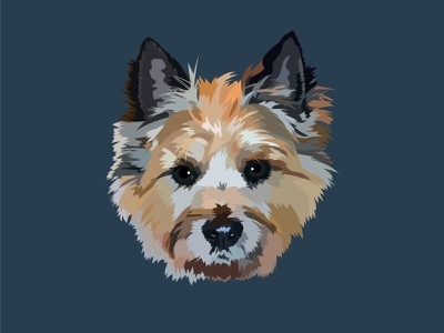 Rye the Cairn Terrier Portrait adobe illustrator doggy digital portrait portrait design vector graphic design graphicdesign digital illustration dog illustration illustration art illustration illustrator dog dogs pet portrait dog portrait terrier