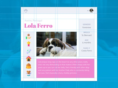Social Network for Dogs — Profile profile web development web design web flexbox pet css grid grid social network interface ui