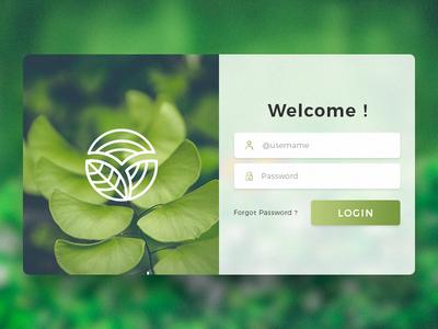 Web Page Login