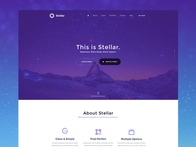 Stellar v2 user experience ux web design web user interface ui for sale theme wordpress product