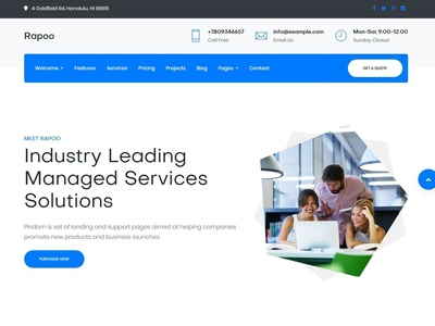 Rapoo  It Solutions Corporate Template
