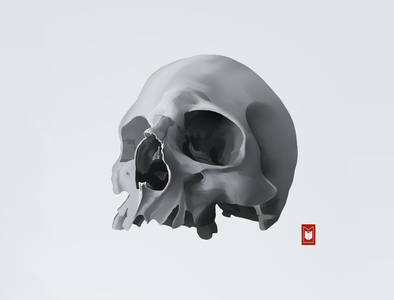 Skull skull art skull logo illustration shimur