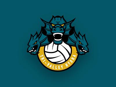 Hydra sports branding branding hydra volleyball logo sports polo water