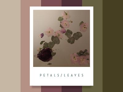Colour Inspiration #5 design inspiration water palette floral flowers colour color