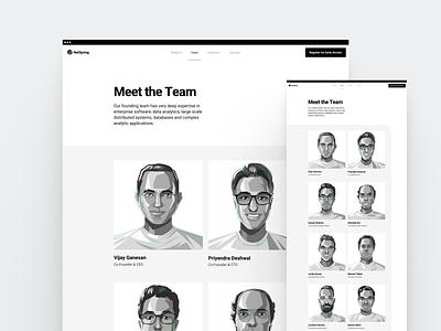NetSpring Stealth Site · Team saas web space branding illustration clean flat white minimal webdesign