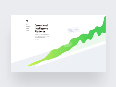 NetSpring Stealth Site infographic animation branding illustration clean space ux ui web design typography minimal application menu white
