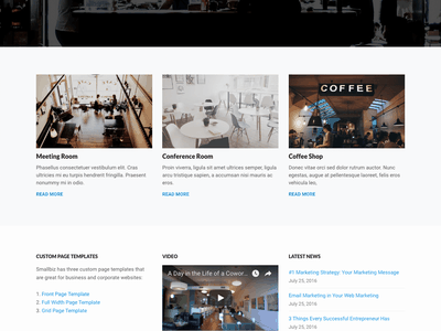 Smallbiz web website blue theme entrepreneur business wordpress