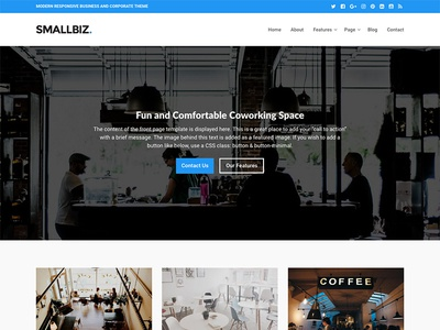 Smallbiz web website blue theme entrepreneur business wordpress