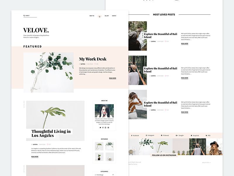 Velove palm blog wordpress webdesign web design website web
