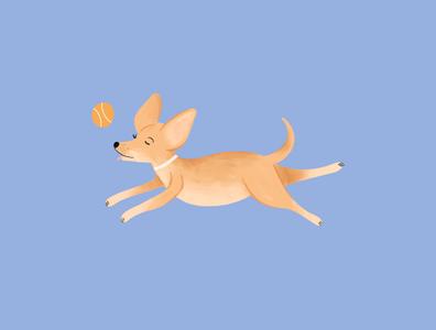 Pepper run pet playful doggo dog graphic design hand drawn illustrator procreate design illustration