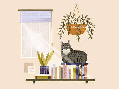 Charlotte pet window shelf plant cat lady cat illustrator hand drawn procreate design illustration