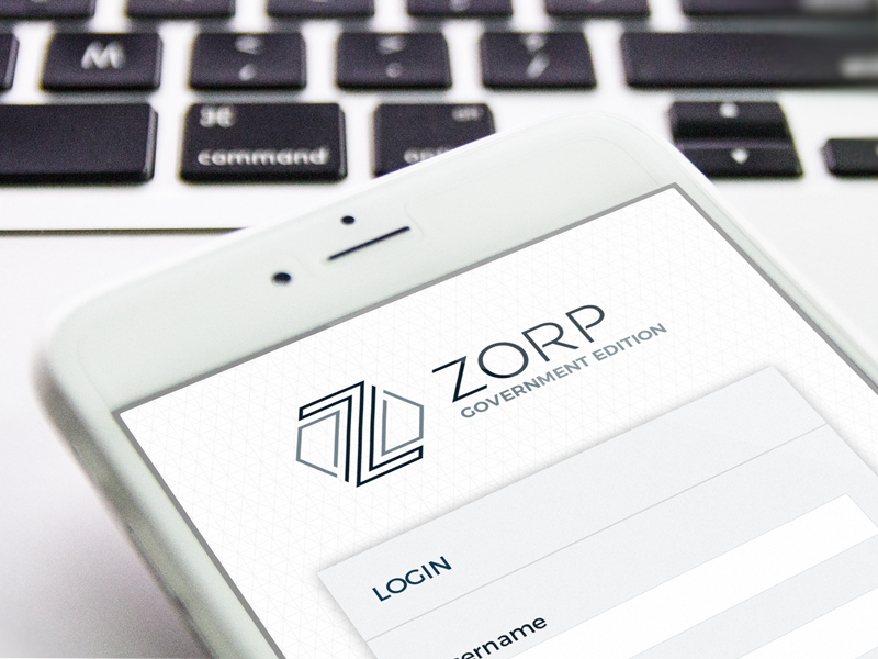 ZORP Government Edition UI background grid hexagon login screen ui
