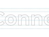Connectax logo anatomy