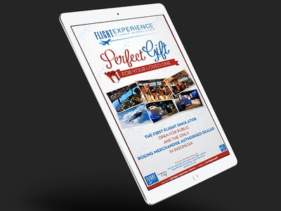Flight Experience | Banner Design ads banner design digital graphic design banner