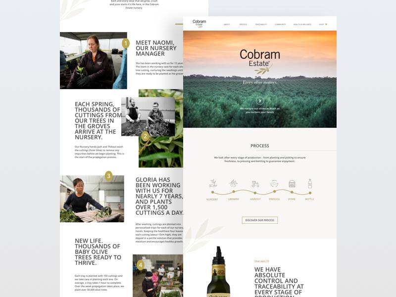 Product Website - Premium Olive Oil webdesign ux ui simple product minimal homepage food design clean web concept