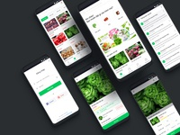 App placed vegetables