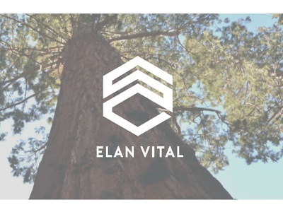 Elanvital Identity growth graphic design identity logo brand