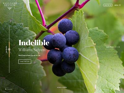 Landing Page Slider css layout hero sliders winery vineyard wine grapes background-image slider home landing page