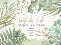 Watercolor & Gold Tropical Set graphics clipart floral tropical leaves vector illustrations illustration design graphic design graphic elements elements beautiful watercolor flowers watercolor floral watercolor tropical tropical set tropical gold tropical gold watercolor