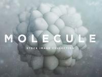 3D Molecule Objects