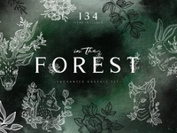 IN THE FOREST. Enchanted graphic set