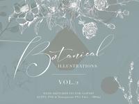 Botanical Illustrations Vol.2