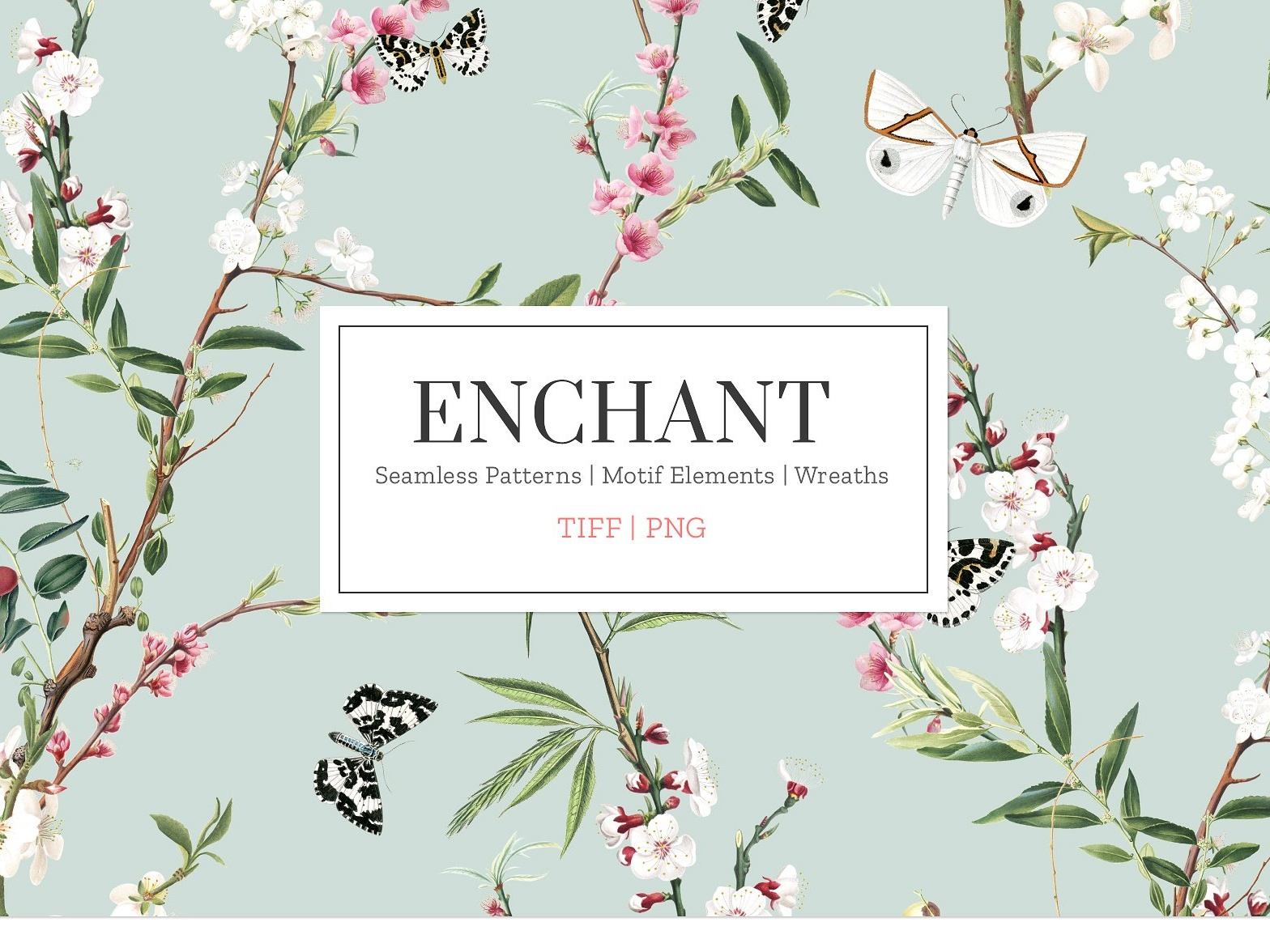 Enchant, Elegant & Exquisite! by Graphics Collection on Dribbble