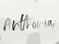 Anthonia SVG Script