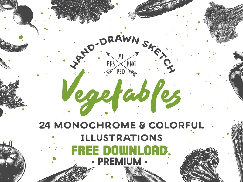 Free Premium Download Collection Of Hand Drawn Vegetables By