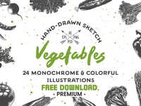 Free Premium Download - Collection of hand-drawn vegetables