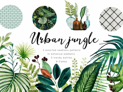 Tropical Leaf Designs Themes Templates And Downloadable Graphic Elements On Dribbble ✓ free for commercial use ✓ high quality images. tropical leaf designs themes
