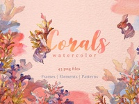 Corals Watercolor png