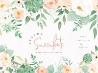 Peachy Succulents Watercolor Florals