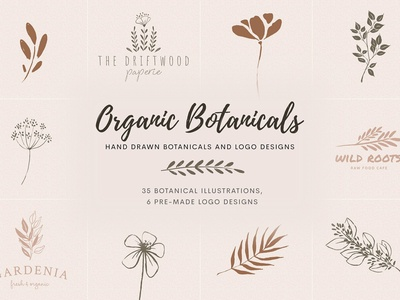 Organic Botanicals and Logo Designs