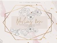 Blush Textures Floral Illustrations