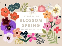 Blossom Spring Toolkit