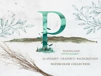 "watercolor ""WOODLAND"" Collection"