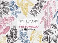 FREE Download - Myrtle Plants Collection