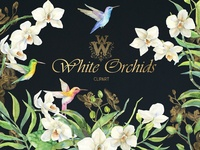 White Orchids Watercolor clip art