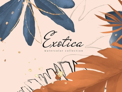 Exotica. Navy Blue & Terracotta