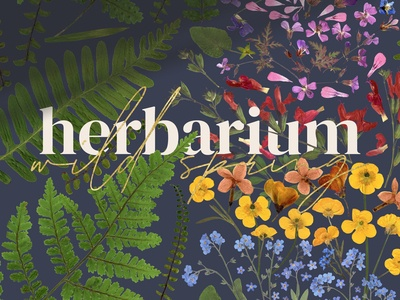 Herbarium vol. 2: Wild Spring