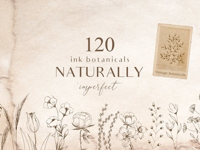 Ink Botanicals Vintage Wildflowers