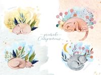 Watercolor Cats Illustrations