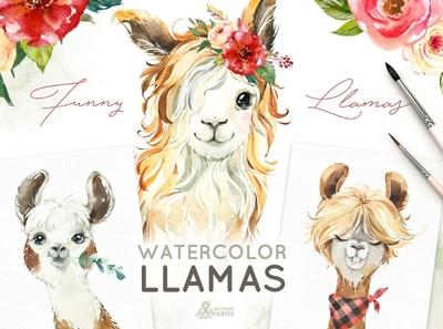 Llamas. Funny Watercolor Animals